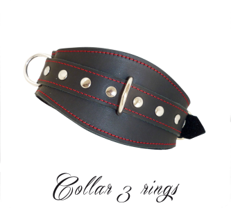 Collar With 3 Rings